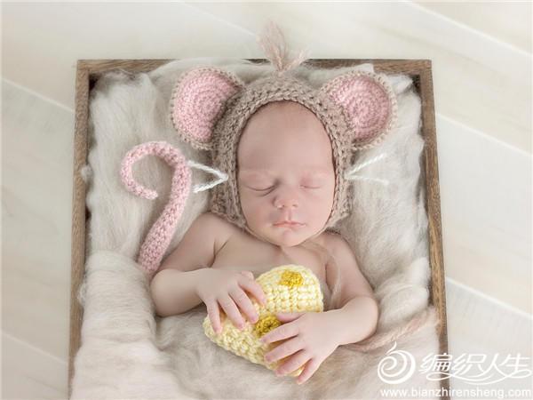 偷吃奶酪鼠宝宝编织主题
