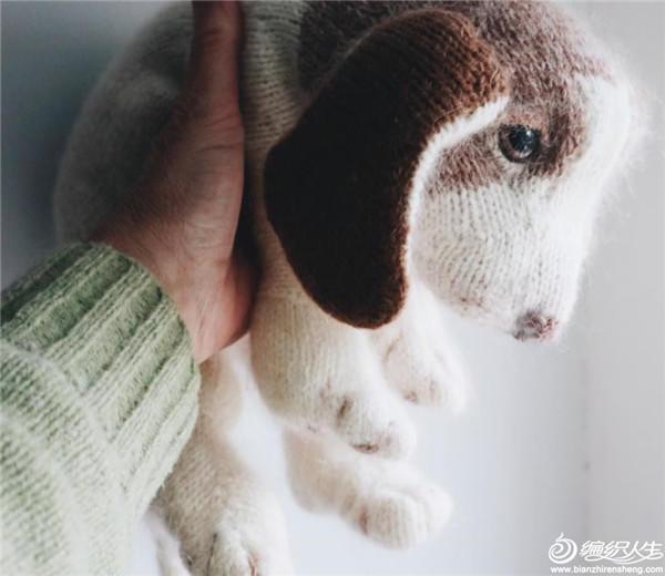 棒针狗狗比格犬幼犬