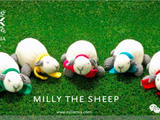 【转载】#羊年编织#米莉小羊玩偶教程 #舒舒编译馆#