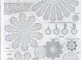 【转载】圆明园(含各类山菊花图解)资料收藏