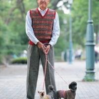 老人与狗的快乐编织故事