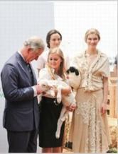 为羊毛努力的羊毛运动 英王室倡导