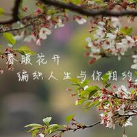 春暖花开 编织人生线上与你相约(三月活动概况)