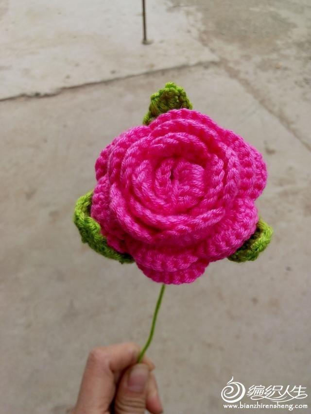 手钩玫瑰花及图解教程-编织人生