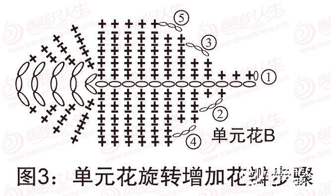 单元花旋转增加花瓣步骤图解
