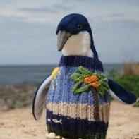 澳大利亚95岁老人为企鹅编织千件毛衣
