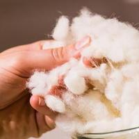 100%可再生天然纤维 关于羊毛的特性