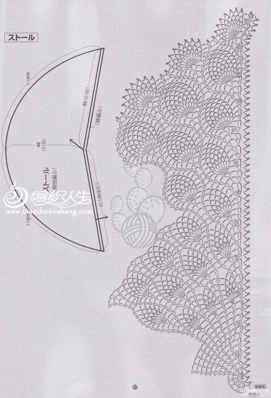 菠萝素描图片步骤新手