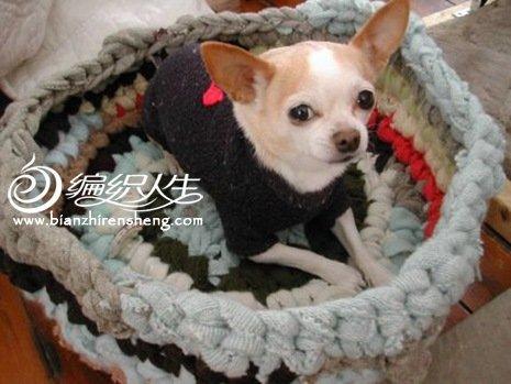 旧物改造:旧衣服diy编织宠物床