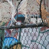 手工钩针蕾丝桌布与铁丝网的艺术