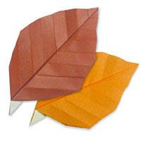 枫叶手工折纸手工DIY教程
