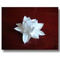 立体花朵折纸手工教程