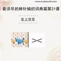 左上交叉 棒针词典第21课(会编织课堂)