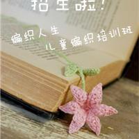 张家港编织人生童趣手工DIY培训班招生中