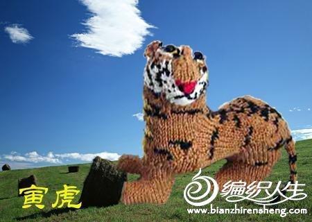 毛线编织的十二生肖动物玩偶