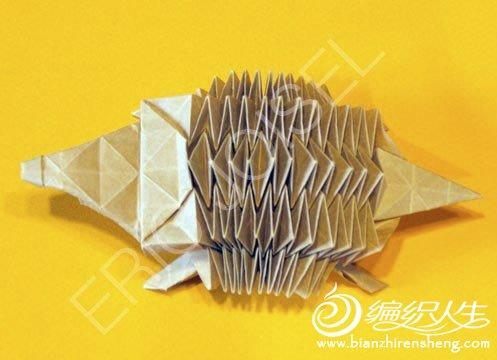 复杂折纸大全之小刺猬折法图解