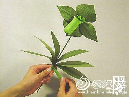 手工折纸大全之纸艺花卉兜兰花图解