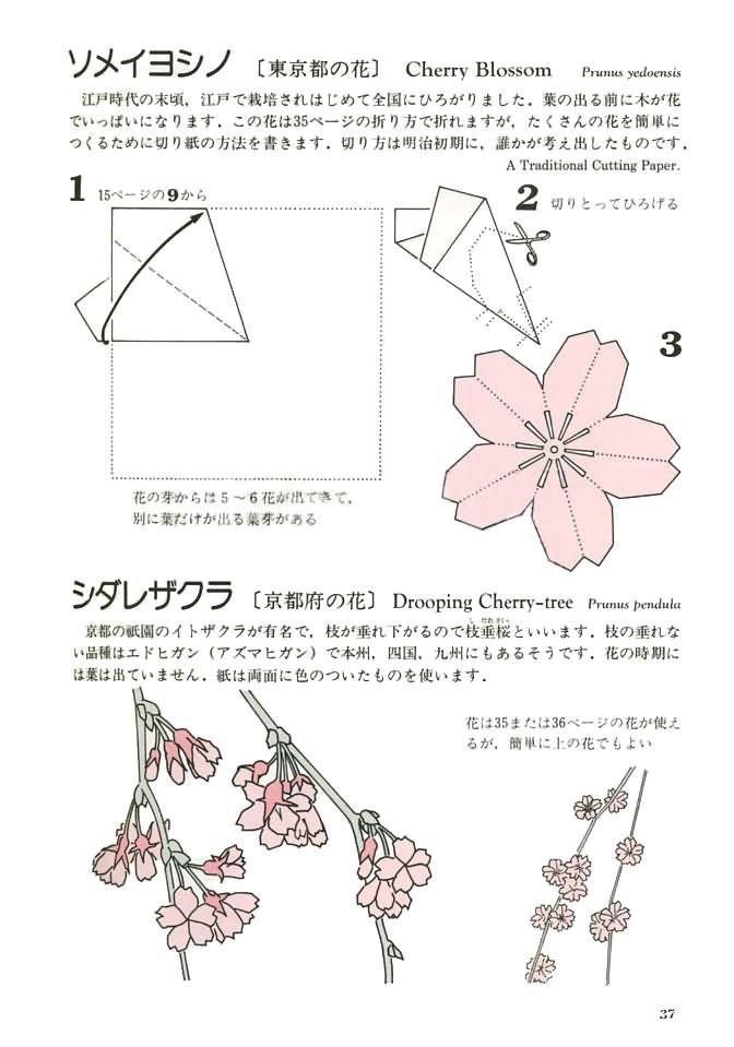 diy创意手工折纸樱花详细教程