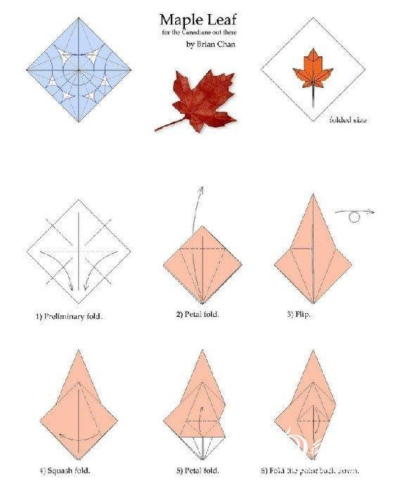 4张纸枫叶折纸步骤图
