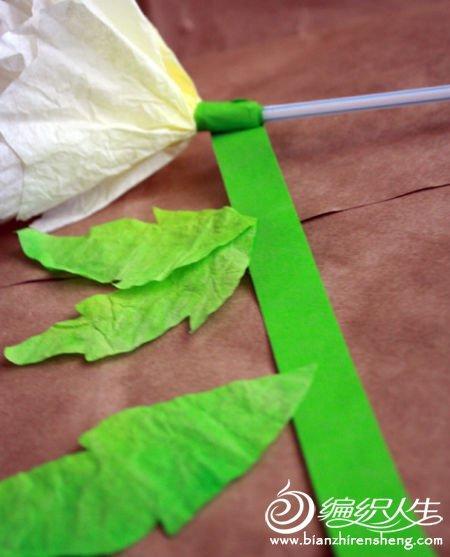 diy手工制作个性芍药花朵