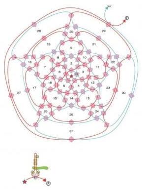 手工串珠 苹果的制作图解