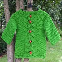 瓢虫爬绿叶 儿童棒针趣味毛衣