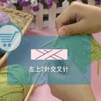 编织人生视频学堂第30集 左上2针交叉针