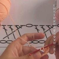 编织人生视频学堂第112集 1针与3针长针的变形交叉针(左上)