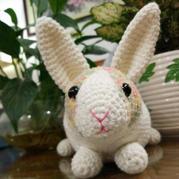 小小兔子跳跳 钩针兔子文字图解教程