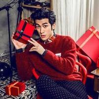 帅气男神卡通图案毛衣 花样美男浆果红色毛衣