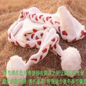 丝带穿插麻花围巾 棒针围巾编织视频教程