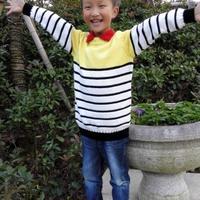 LK150快乐编织机成就的男童条纹衫