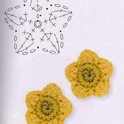 像星星一样的花朵
