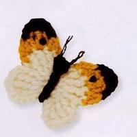 漂亮的立体蝴蝶2