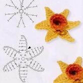 三角形花瓣的六瓣立体花