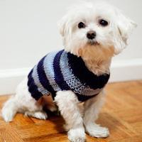 简单的狗狗毛衣编织教程