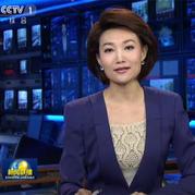 央视新闻主播内搭时尚钩花衣 永恒经典钩针菠萝花的时尚姿态