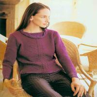 女士棒针紫红色简单麻花修身长袖套衫