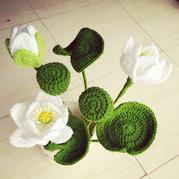 毛线钩花之白莲花盆栽的钩法图解