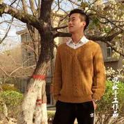 手工编织毛衣款式之男士棒针V领麻花套头衫