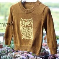 手工编织婴幼儿毛衣款式之Q萌棒针猫头鹰图案圆领衫