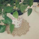 大暑时节消暑纳凉 绿植与麻棉编织杯垫