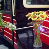 毛线花卉编织视频教程教你钩针向日葵花束的钩法