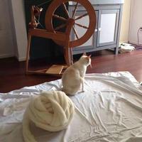 毛线编织新玩法:巨型毛线!