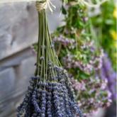 【手工DIY】枯萎的鲜花竟然有这么多用处!