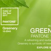 """绿意盎然的2017年度色彩""""草木绿"""""""