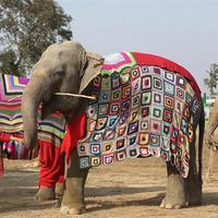 钩针祖母方格毯变身大象御寒新衣