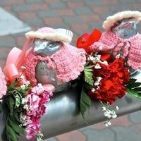 日本老奶奶十几年为麻雀雕塑亲手编织毛衣