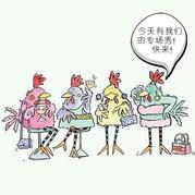 【毛线编织鸡玩偶主题展】百余图大秀毛线编织诸多可能性