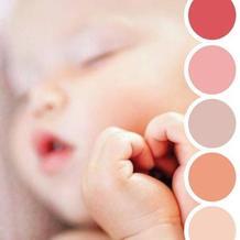 色彩搭配师眼中的世界 来自自然万物的配色参考